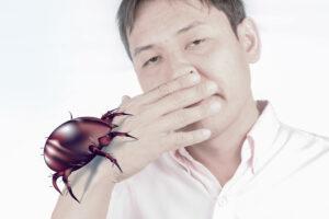Allergies aux acariens quelles sont les précautions à prendre